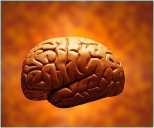 effects of addiction on the brain, neurogenesis